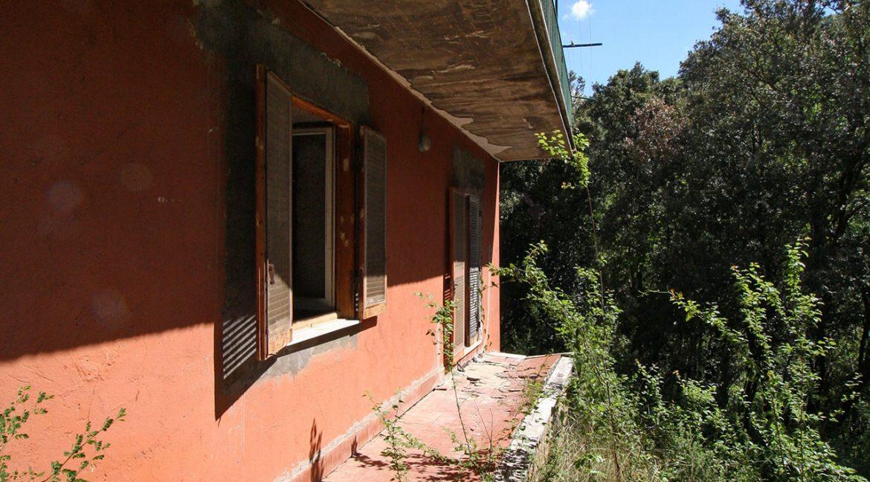 Casa-nel-bosco_02