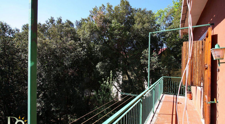 Casa-nel-bosco_18