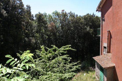 Casa-nel-bosco_24