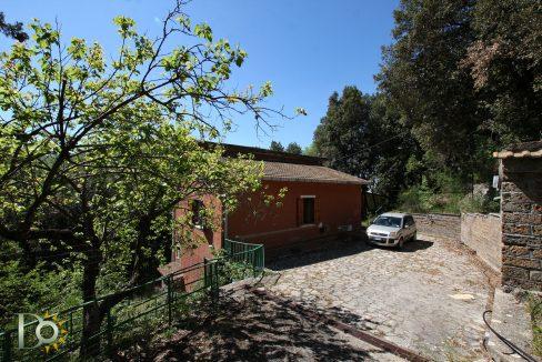 Casa-nel-bosco_32
