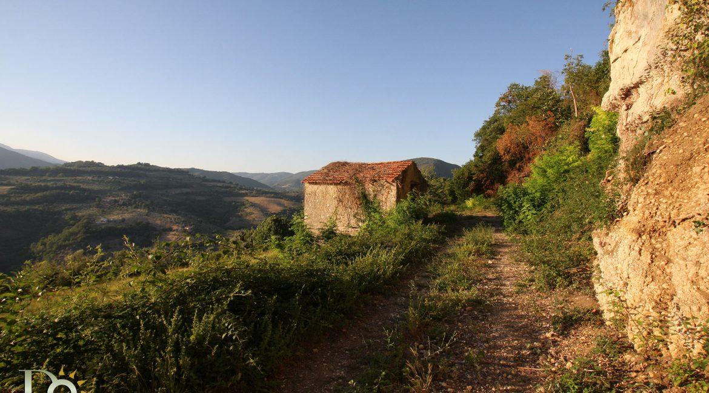 Casaletto-Vigne-Santi_002
