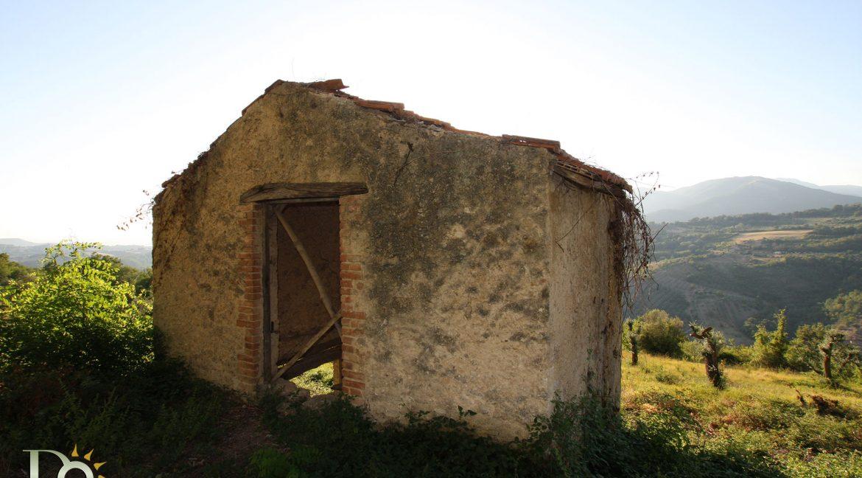 Casaletto-Vigne-Santi_005