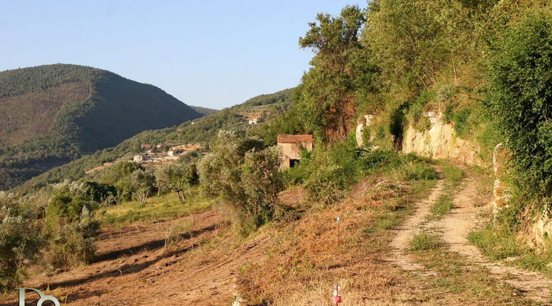 Casaletto-Vigne-Santi_013