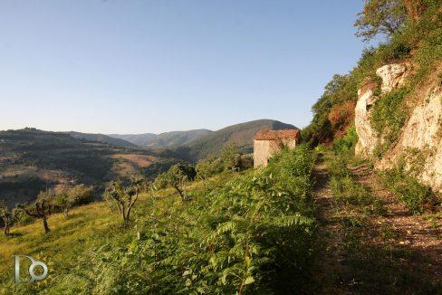 Casaletto-Vigne-Santi_015