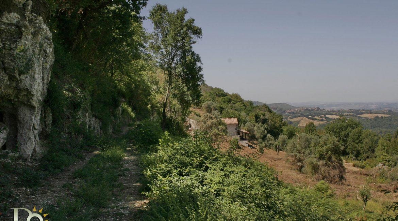 Casaletto-Vigne-Santi_021