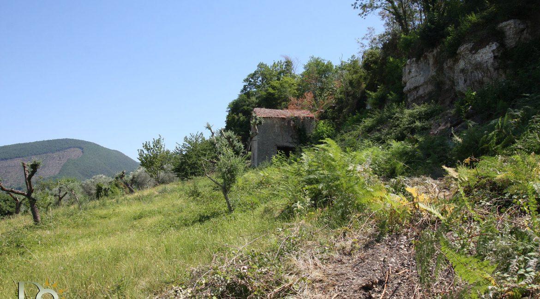 Casaletto-Vigne-Santi_027