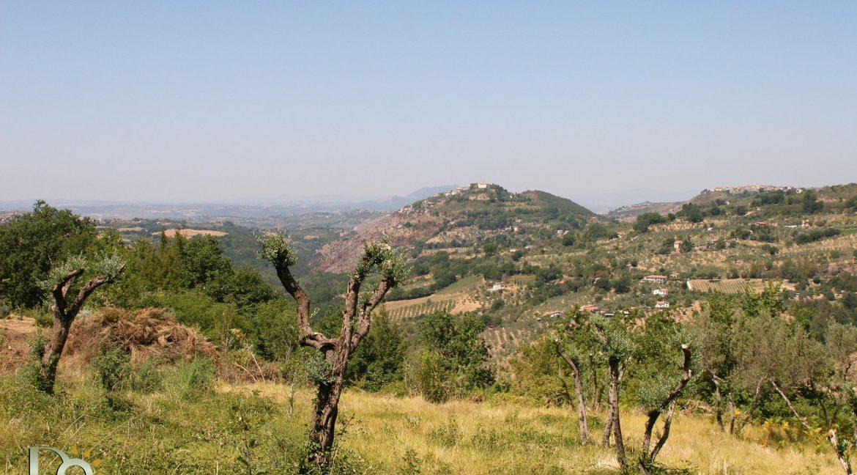 Casaletto-Vigne-Santi_033