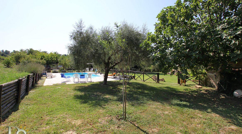 05-Colle-dei-Gelsi