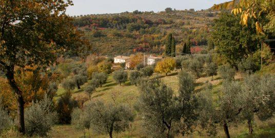 dionisi-immobliare-real-estate-italia-centrale