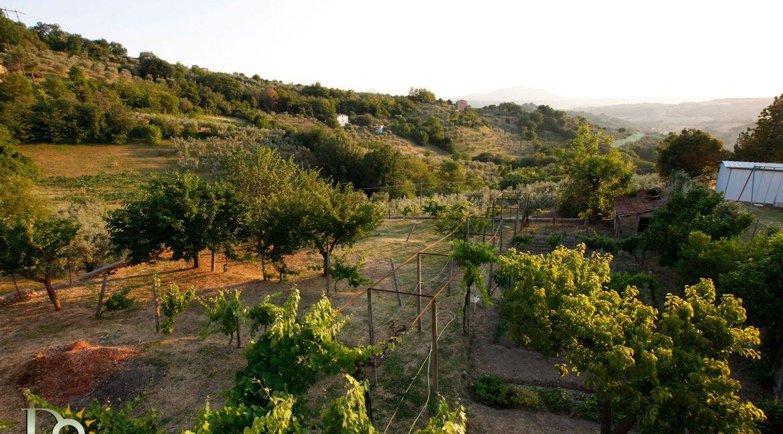 Villa-Cicconetti_30