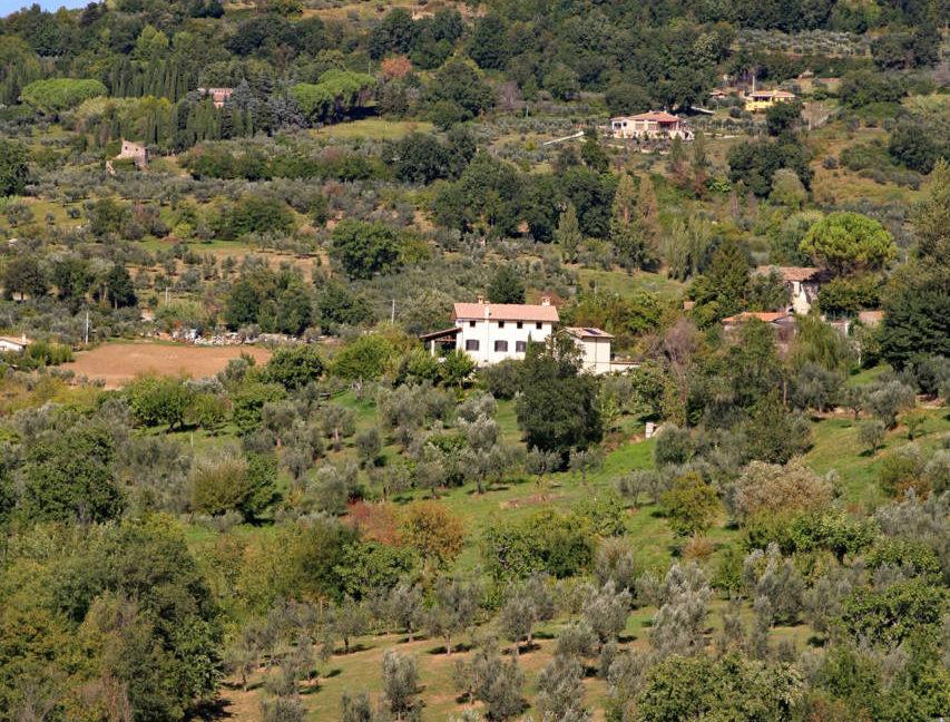 Casale_della_Lavandara_48