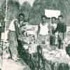 Dionisi-our-origins